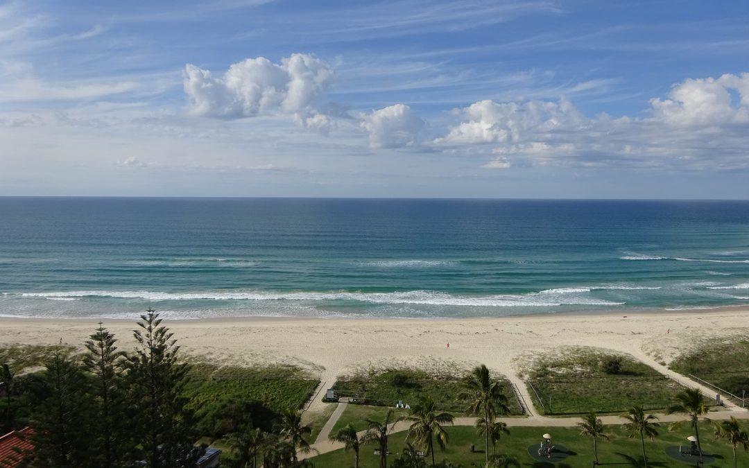 Royal Palm Resort Palm Beach Accommodation Ocean Views